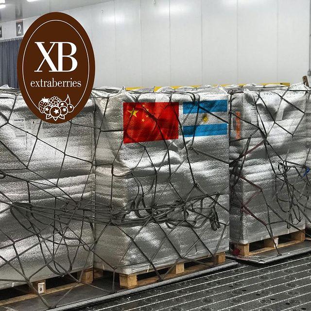 Exportación a China - Cerezas