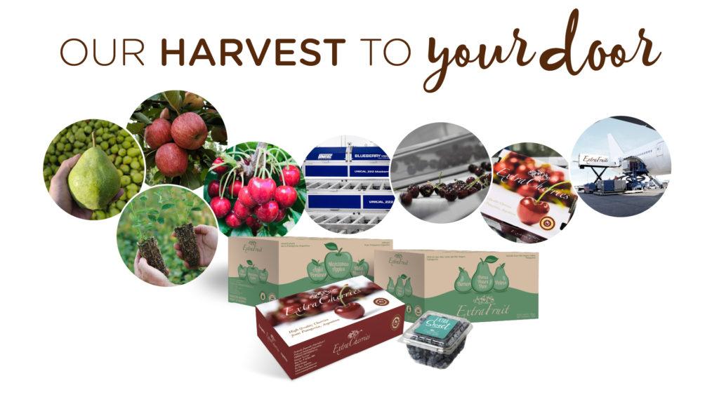 Our Harvest to Your Door